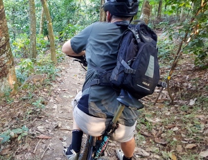 monkey crossing while mountain biking